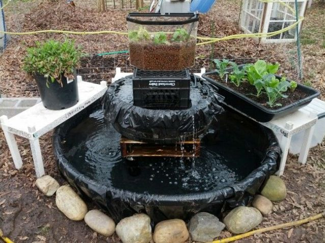 April 2014 be sustainable today for Aquaponics pond design